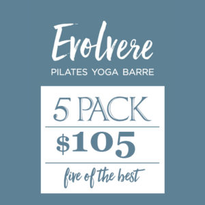 Evolvere Pilates Yoga Barre 5 pack $105 five of the best